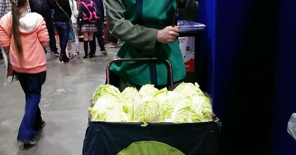 THE CABBAGE GUY