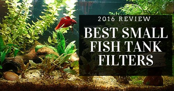 New the top 5 best small aquarium filter for 2017 review for Best small fish tank