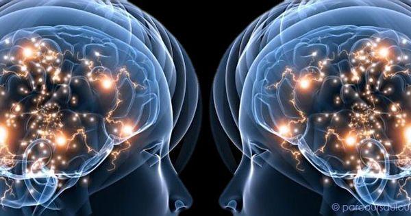 Les neurones miroirs que se passe t il dans mon cerveau for Neurones miroir