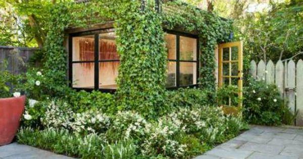 immergr ne kletterpflanzen sie dienen zum sichtschutz. Black Bedroom Furniture Sets. Home Design Ideas