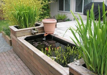 Small Raised Ponds Above Ground Pond Kits Home