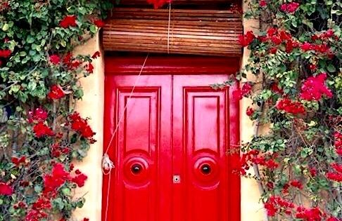 Red door with climbing rose bush in marsaskala malta for Fairy door adairs
