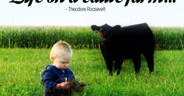 Ranch House Designs Blog: Livestock Motivational Quotes for Pinterest