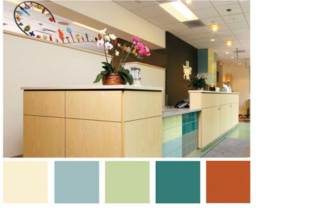 3 Color Palettes That Work For Veterinary Practice Hospital Design Hospital Design Veterinary Veterinary Hospital