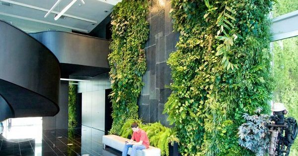 Jardin vertical en el vest bulo de msf lisboa fotograf as for Jardin vertical oficina
