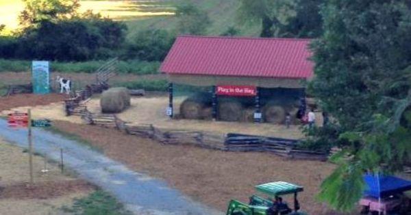 Apple Barn Ellijay Ga - HOME DECOR