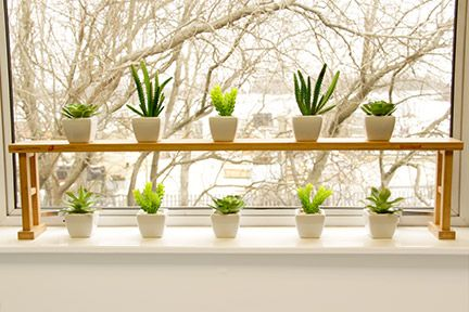 Plants Shelf Kitchen Window Sill Kitchen Window Shelves Window Sill Decor