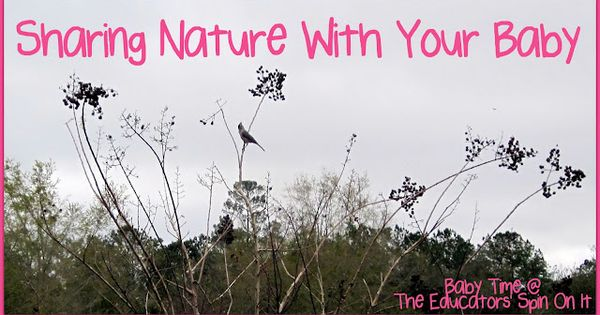 Take a Bird Walk with your baby or toddler. Sharing Nature with