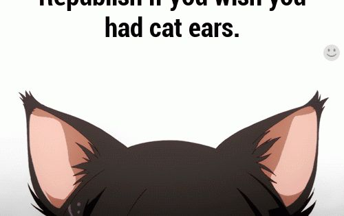 Animation Cat Ears