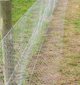 Rabbit Proof Garden Fencing Rabbit Fence Fenced Vegetable Garden Garden Fencing