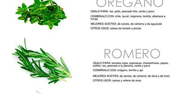 Gu a de hierbas para cocinar infograf a hierbas para for Plantas aromaticas para cocinar