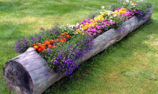 Log Planter - great idea for the stump on the side of