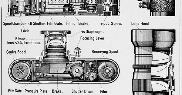This 1939 Cutaway Diagram Shows The Anatomy Of A Leica