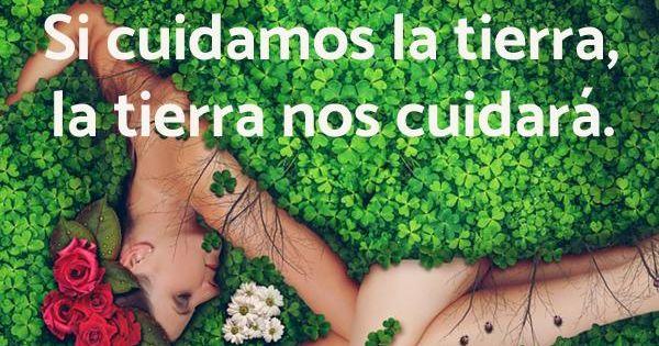 45 Frases Sobre El Medio Ambiente Para Niños Con Fotos Frases Ambientales Frases Naturaleza Frases Ecologicas