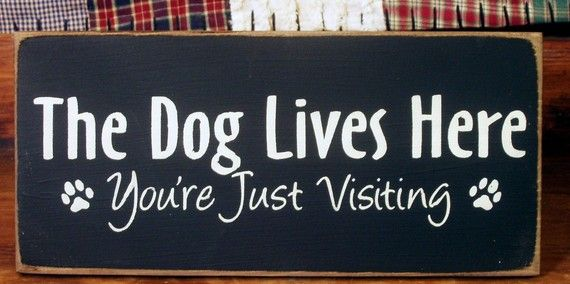 The Dog Lives Here You Re Just Visiting By Woodsignsbypatti Dog