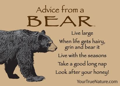 Look After Your Honey Advice From A Bear Magnet 3 75 Usd Your True Nature Bear Quote Bear Advice