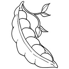 Top 10 Peas Coloring Pages For Toddlers With Images Fruit
