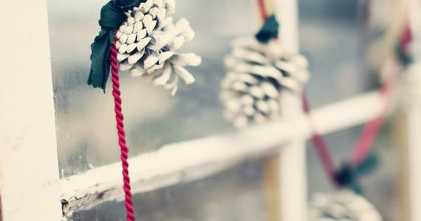 simple diy idea for xmas -> White Pinecone Garland, this would be