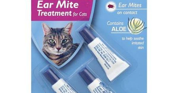 How To Clean Cats Ears For Mites Google Search Cat Health Cat With Blue Eyes Cat Brain