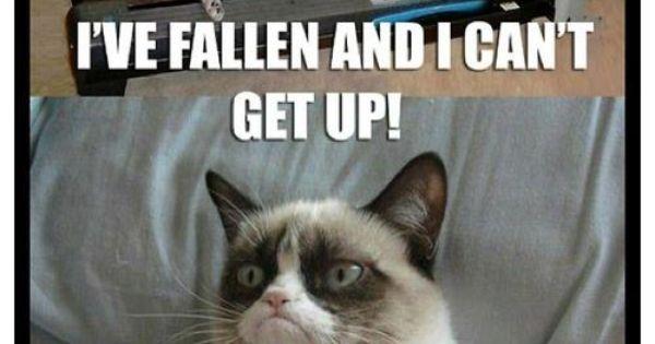 Funny Life Alert Meme : I ve fallen and can t get up fun stuff pinterest