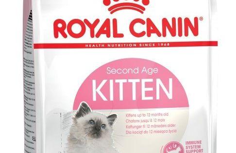 Trockenfutter Fur Kitten Royal Canin Kitten Trockenfutter Fur