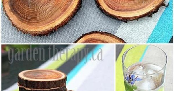 Diy Wood Branch Coasters Hmmm Now I Have A Project For