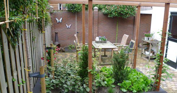 Tuin met verhoogde plantvakken ede hortus novushortus novus tuin inrichting idee n - Eigentijds pergola design ...