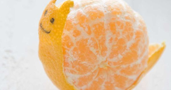 Cute. FoodArt - Via Design Magazine orange food art cute snail DesignMagazine