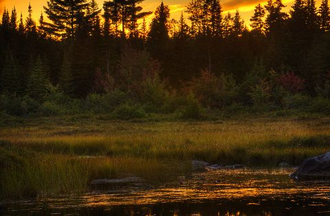 Sunset in Maine (photography, photo, picture, image, beautiful, amazing, travel, world, places)
