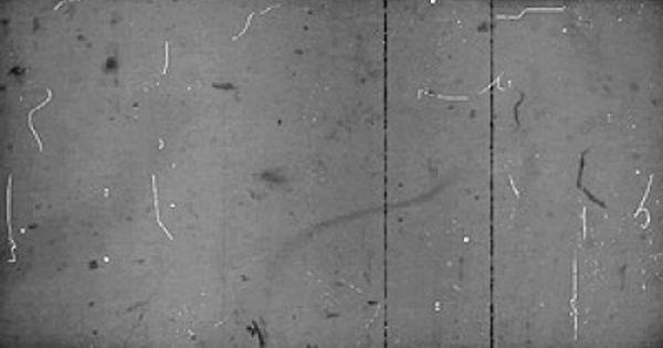 Dark Old Film Look With Hairs Stock Footage Film Texture Photoshop Overlays Art Parody