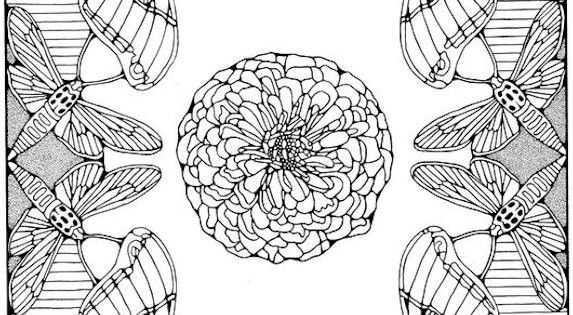 Coloring Pages for Adults Only adult coloring pages