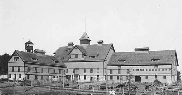 Farm St Paul University Of Minnesota 1910 University Of Minnesota Minnesota Historical Society Minnesota
