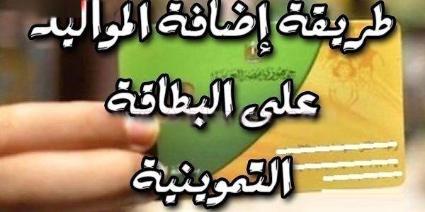 موقع إضافة المواليد الجدد على بطاقة التموين تحديث بيانات بطاقة التموين الذكية رابط موقع دعم مصر Cilo Egypt News