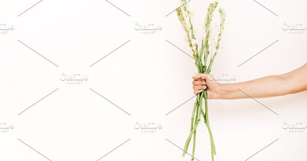 Girl's hand holding white flowers bouquet on white background