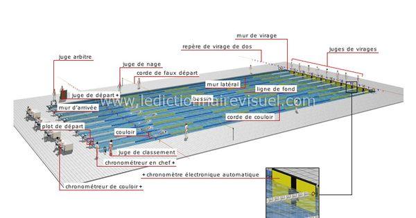 Sports Et Jeux Sports Aquatiques Et Nautiques Natation Bassin De Competition Image Dictionnaire Visuel Jeux Sport Sport Aquatique Bassin