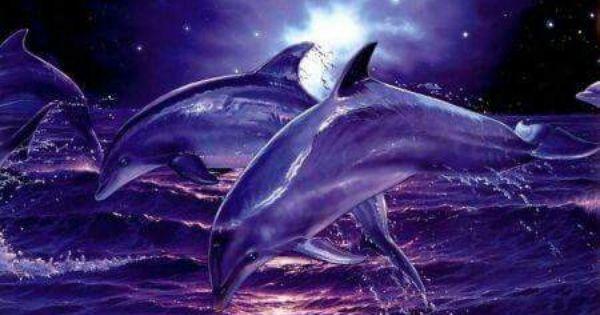 Epingle Par Nathalie Roussel Sur Dolphins Dauphin Animales Art De Dauphin
