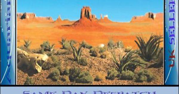 Aquarium / Vivarium Reptile Desert Background 19