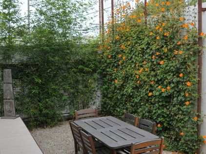 Brise-vue jardin - 18 conseils de plus dintimité et confort ...