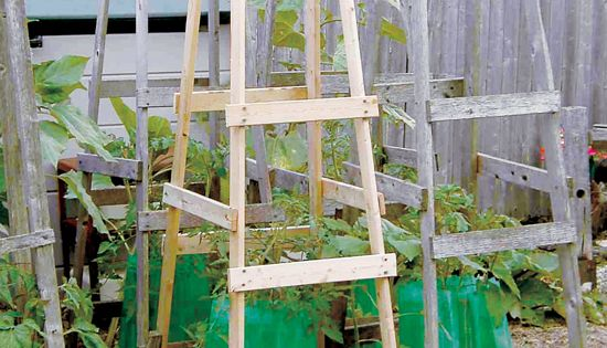 DIY Tomato Cage Ideas - Page 5 Of 8 -