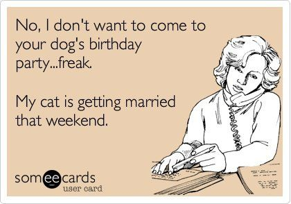 No I Don T Want To Go To Your Dog S Birthday Party Freak Ecards Funny Funny Quotes Haha Funny