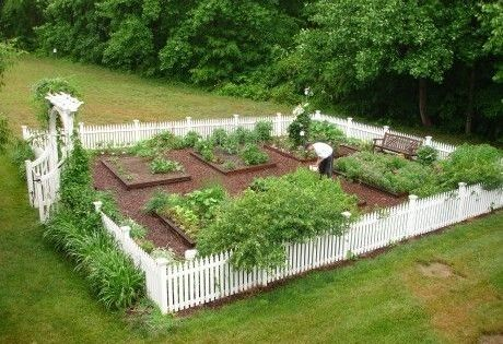 Fenced garden with raised beds love the white picket for Beautiful raised gardens