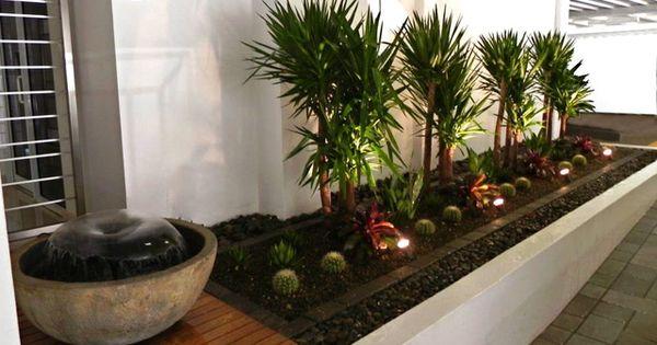 Dise os del jard n en zonas tropicales patio interior - Diseno patio interior ...