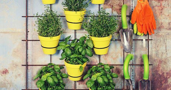 accrocher ca au balcon avec tirraps puis mettre plantes en. Black Bedroom Furniture Sets. Home Design Ideas