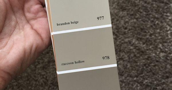Brandon beige strip paint colors pinterest for Clay beige color combinations