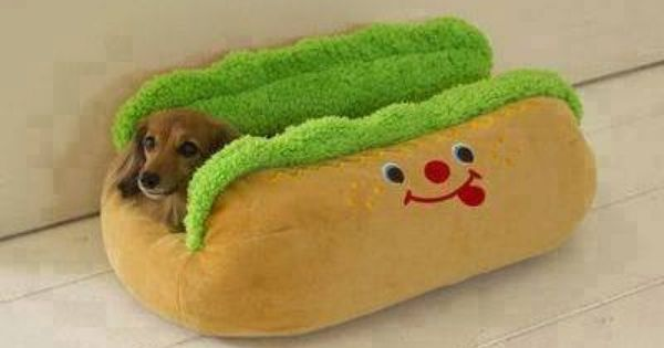 Pin By Allison Jones On Puppers Dog Pet Beds Animal Pillows Funny Dog Beds