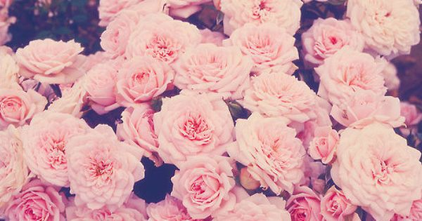 girly twitter headers - Google Search   iPhone wallpaper ...  girly twitter h...