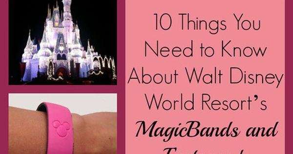 10 Things You Need to Know about Walt Disney World Resort's Magic