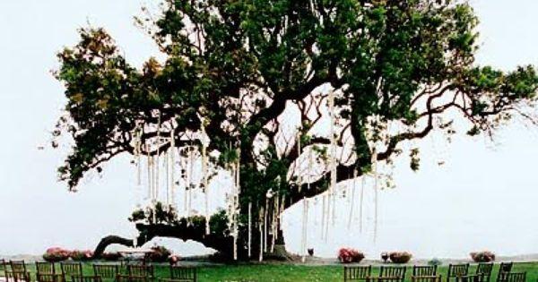 Beautiful Wedding Ceremony Decorations | Beautiful Outdoor Wedding Reception Decoration Design Ideas