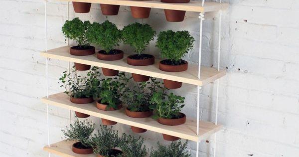 Un jard n vertical de hierbas arom ticas jard n vertical - Jardin de aromaticas ...