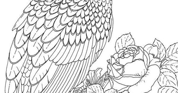 Eagle Coloring Pages Eagle Coloring Pages Pinterest